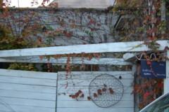 f:id:asacafe:20121113104051j:image