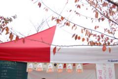 f:id:asacafe:20121201131106j:image