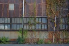 f:id:asacafe:20121201160215j:image