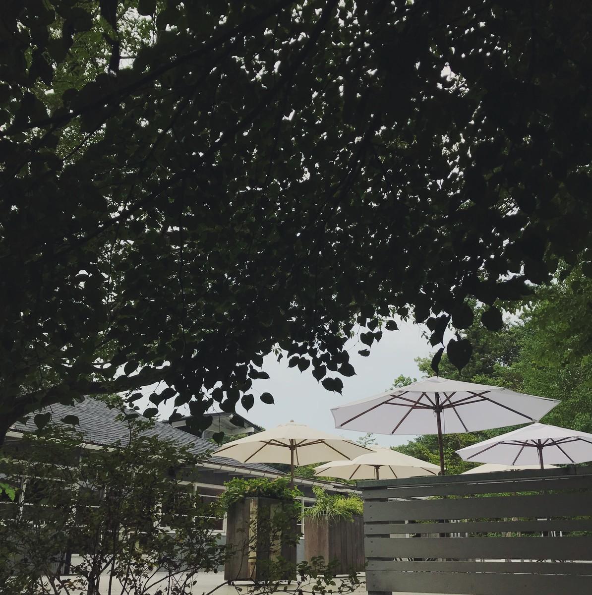 f:id:asacafe:20190820233609j:plain