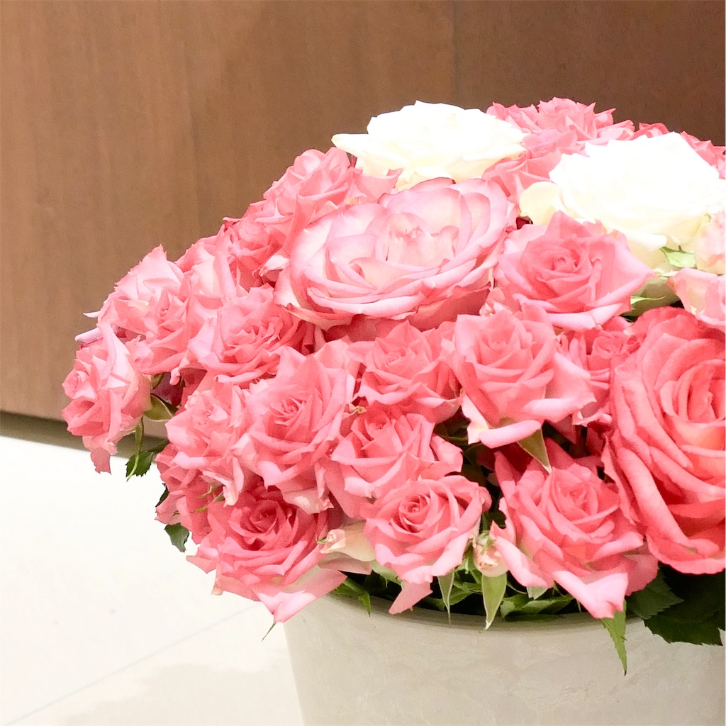 AFRIKA ROSE & FLOWERS(アフリカローズ)