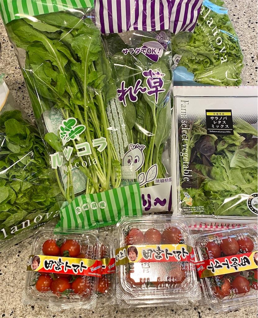 八ヶ岳産ミニトマトと無農薬水耕野菜