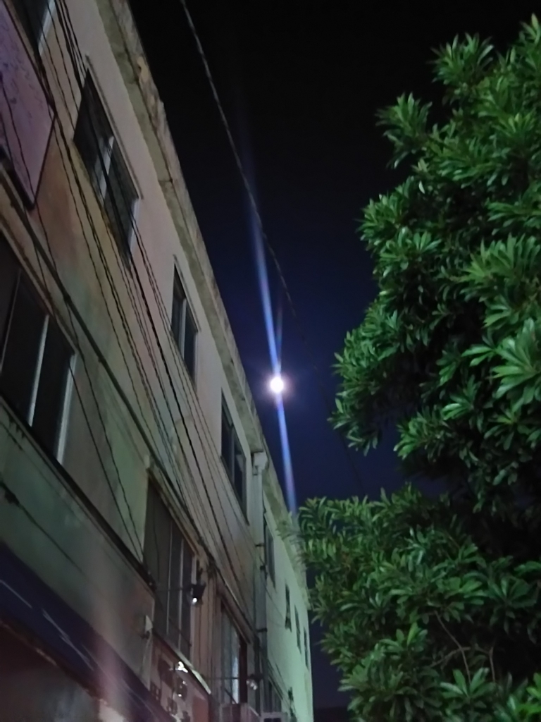 f:id:asadaseiichi1213:20170725221930j:plain