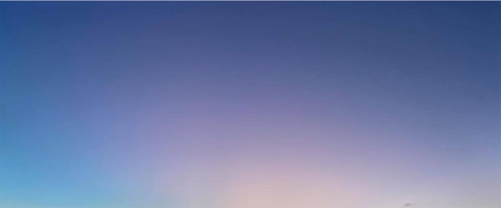 f:id:asadaseiichi1213:20200207222437j:image