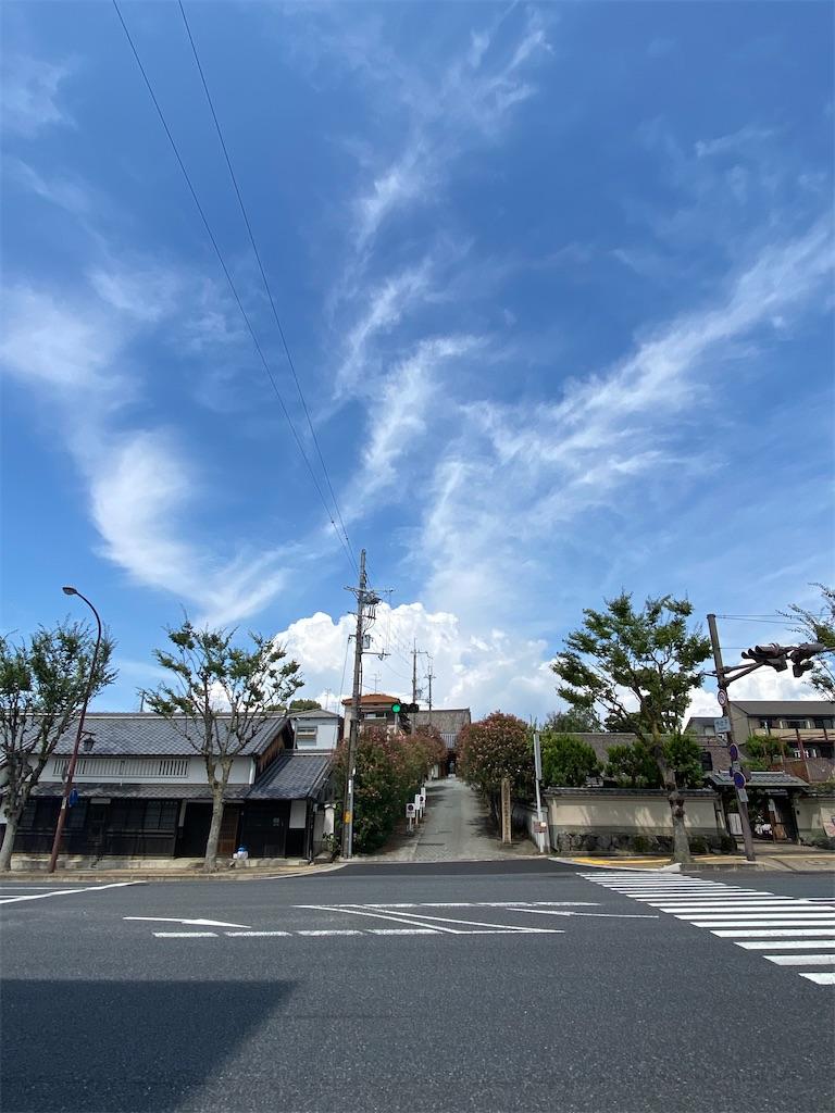 f:id:asadaseiichi1213:20200901220440j:image