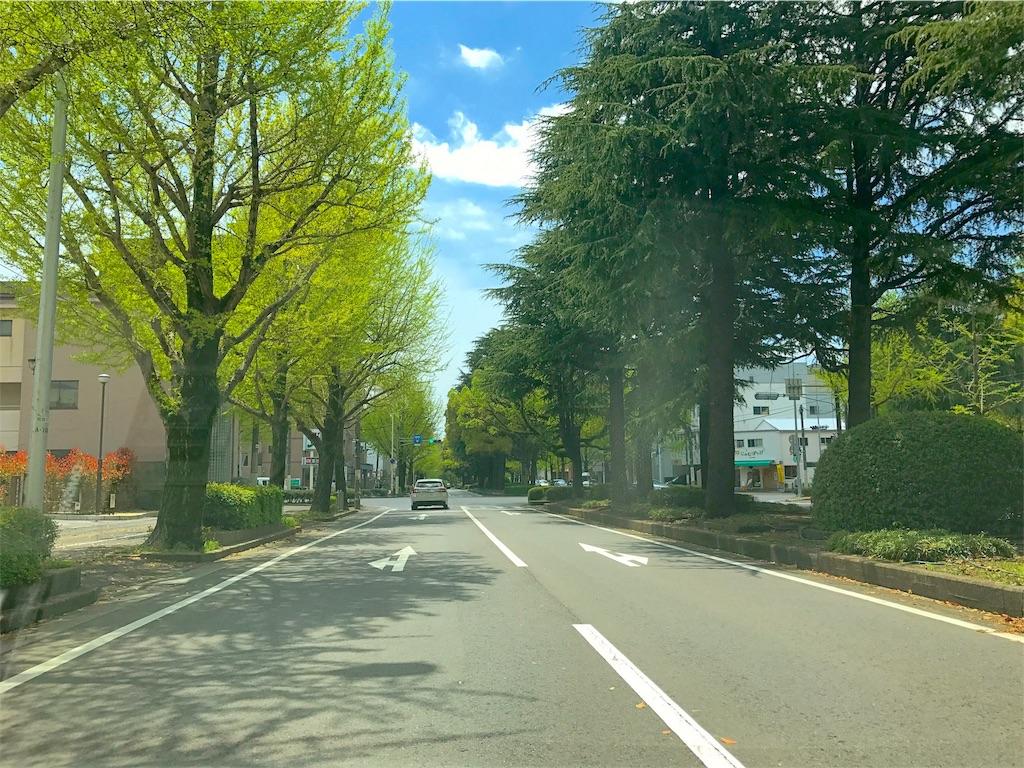 f:id:asaedashinya:20170419220947j:image