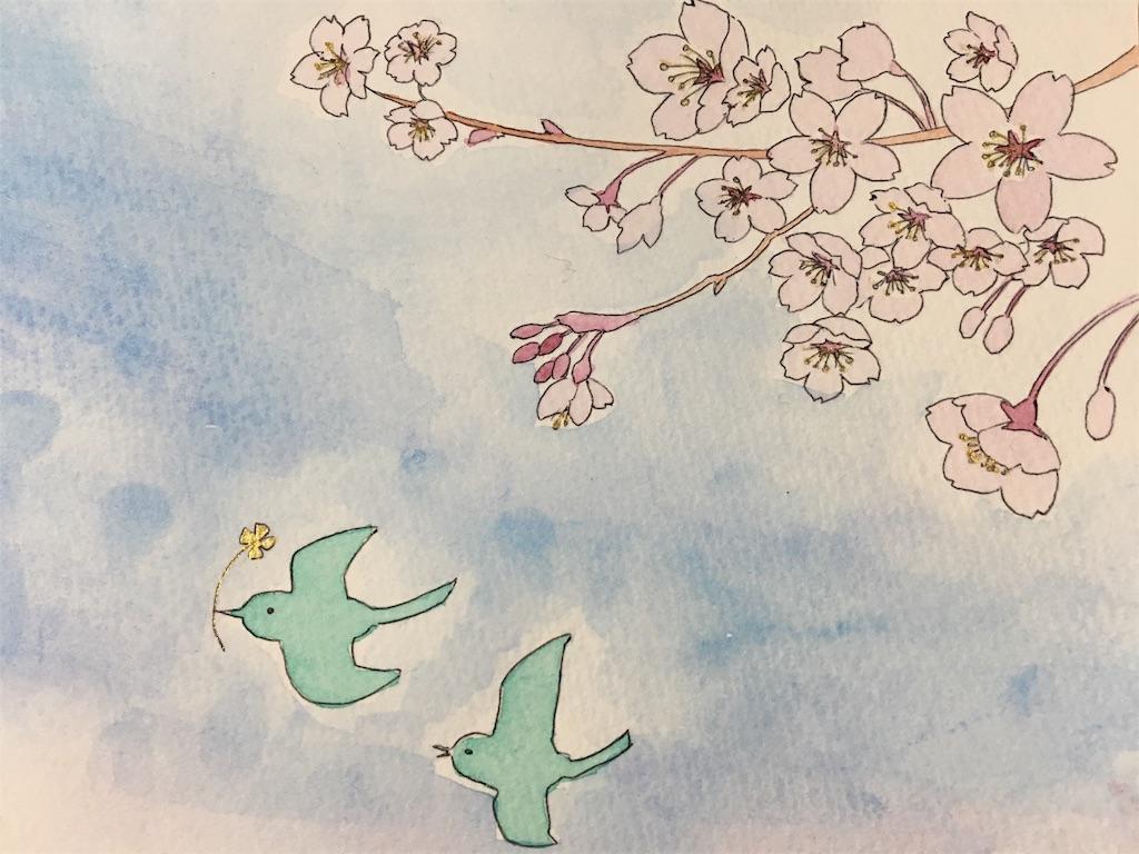f:id:asagao-nikki:20180318001555j:image