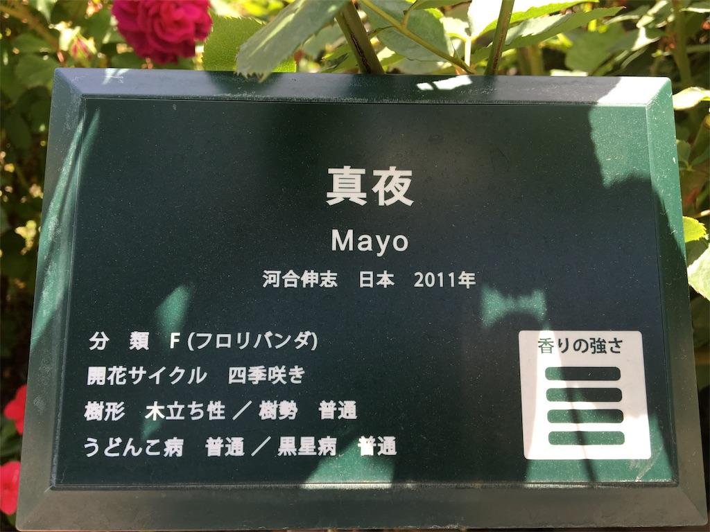 f:id:asagao-nikki:20180429174057j:image