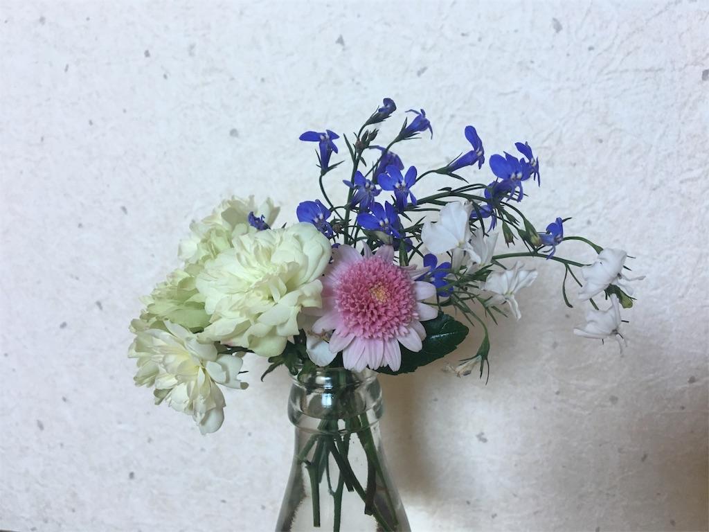 f:id:asagao-nikki:20180524001356j:image