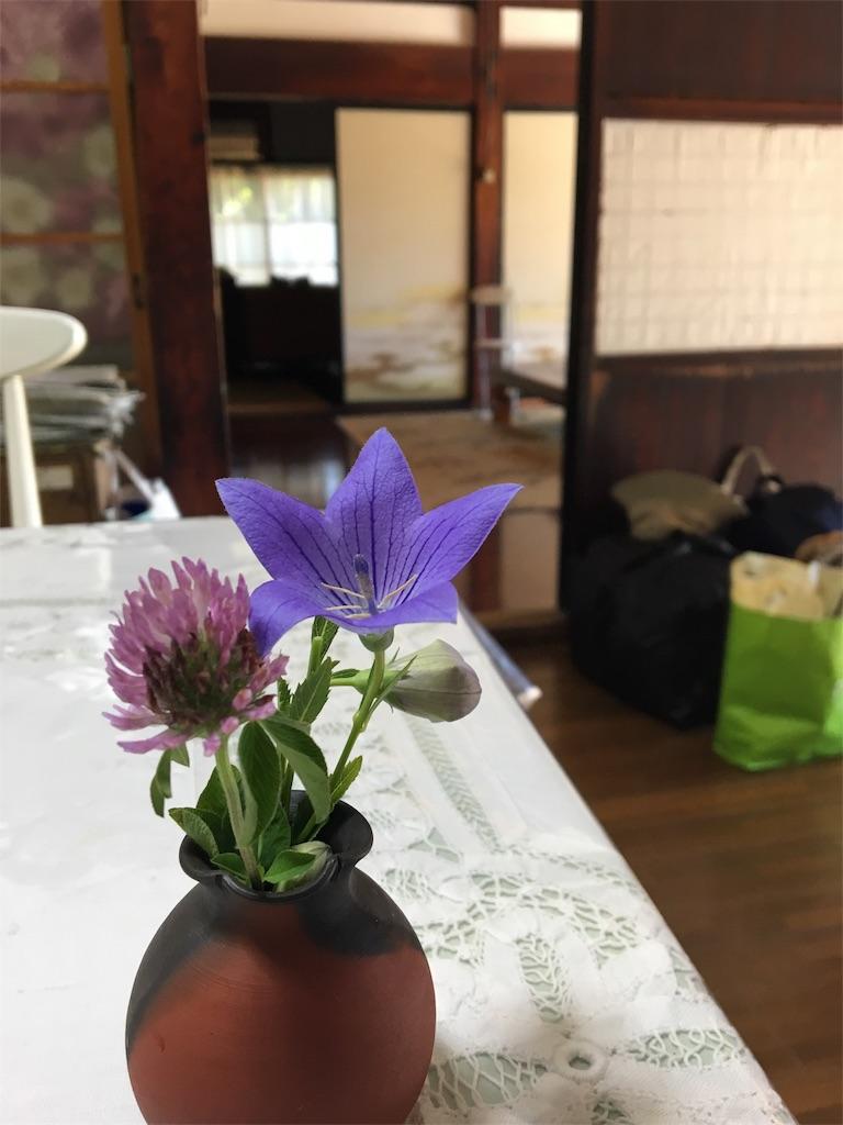f:id:asagao-nikki:20180810000338j:image