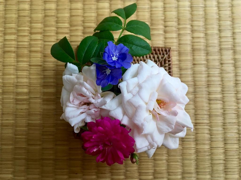 f:id:asagao-nikki:20180820234025j:image