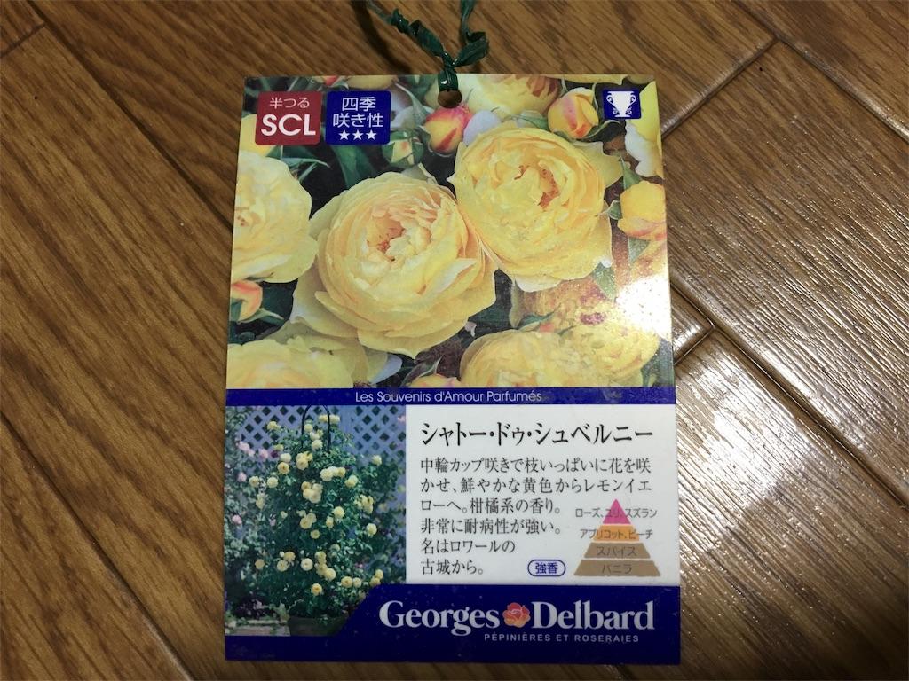 f:id:asagao-nikki:20190206112111j:image