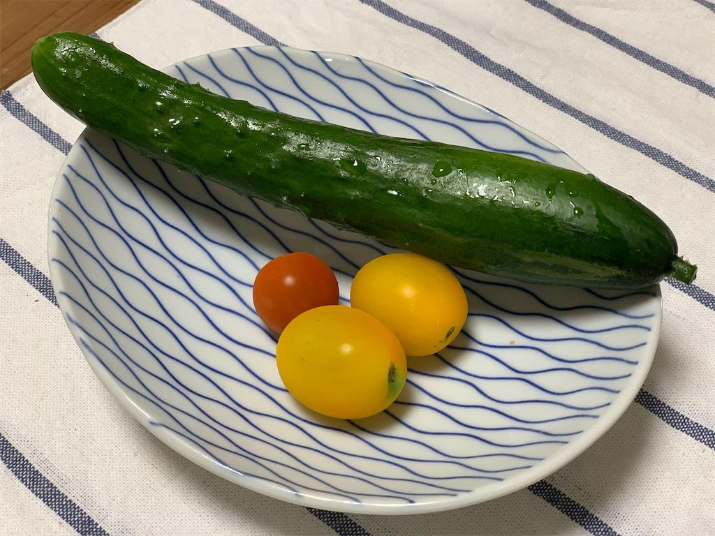 f:id:asagao-nikki:20200711084743j:image