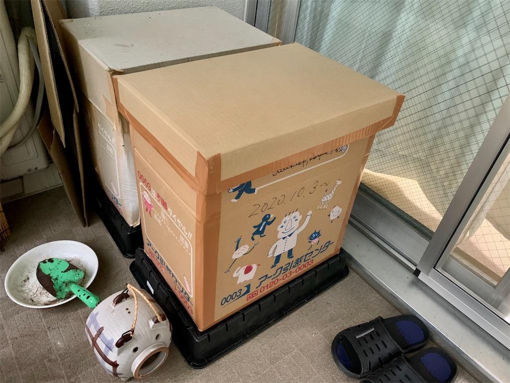 f:id:asagao-nikki:20201230115701j:image