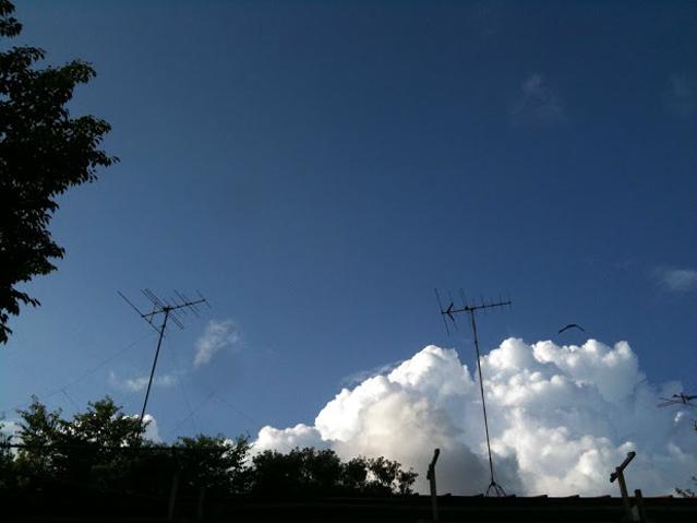 f:id:asagaya_densho:20130416115101j:image