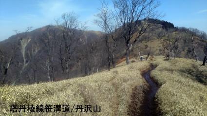 f:id:asagiri33:20200321102049j:plain
