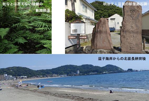 f:id:asagiri33:20210526105241j:plain