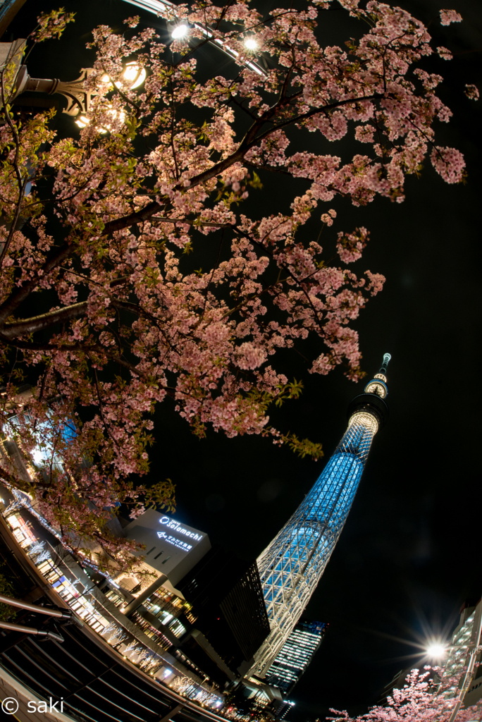 f:id:asahaka1:20170224004812j:plain