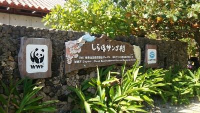 20141123_shiraho1.jpg