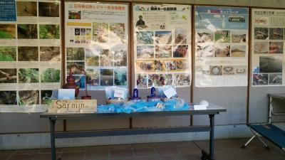 20141123_shiraho5.jpg