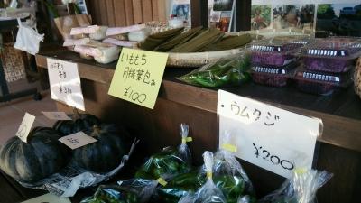 20141123_shiraho7.jpg