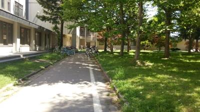 20140901_campus.jpg