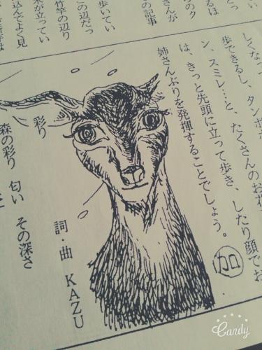 20160625_bambi.jpg