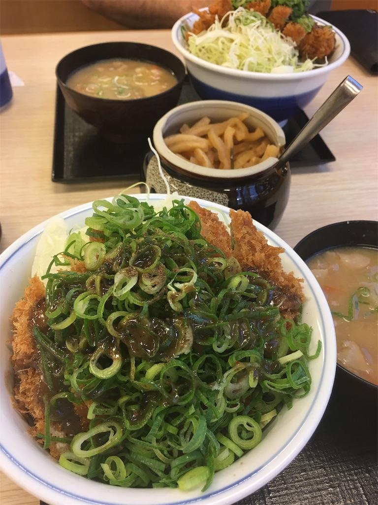 f:id:asahi-diet:20170615044338j:image