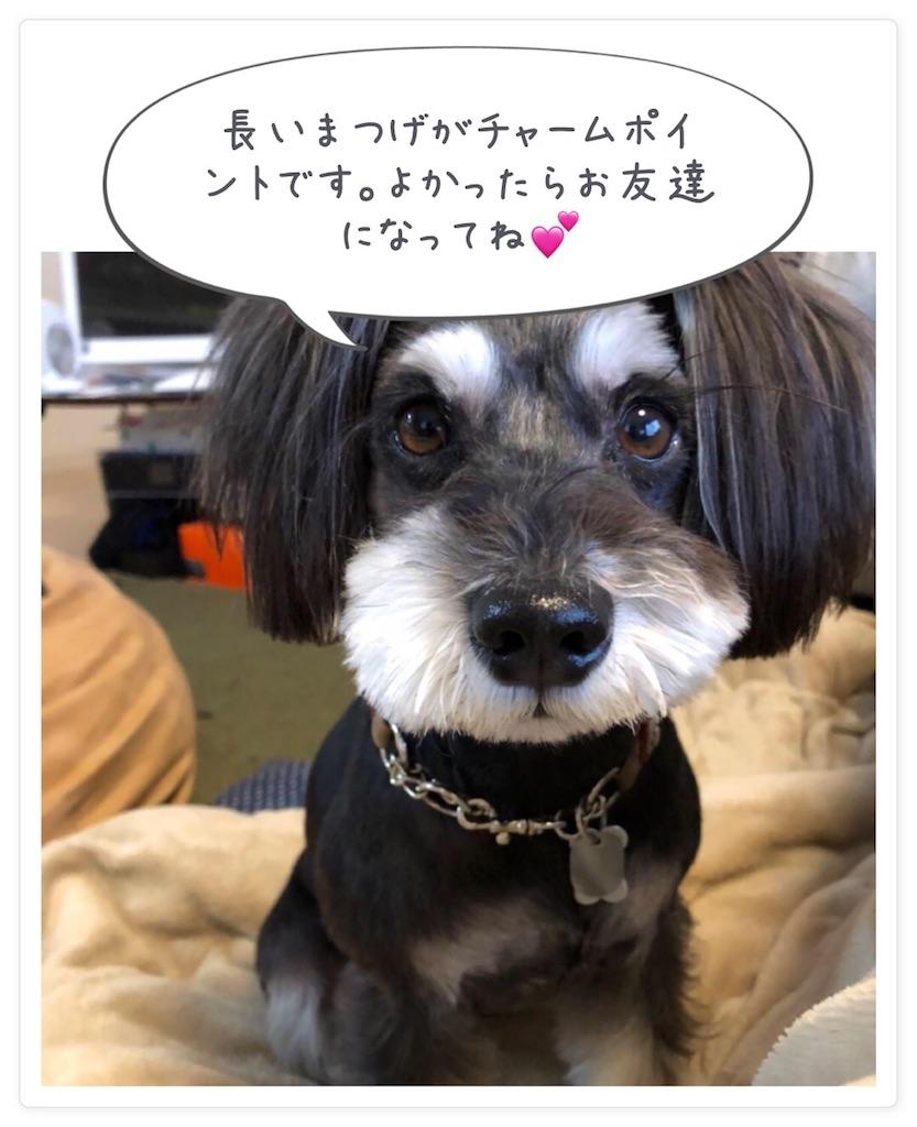 f:id:asahi-diet:20180402110423j:image