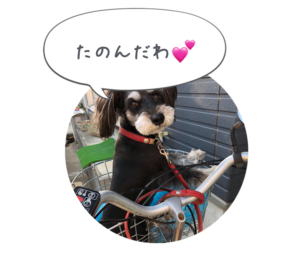 f:id:asahi-diet:20180404094011p:image