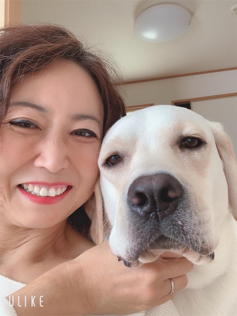 f:id:asahi-diet:20191108092915j:image