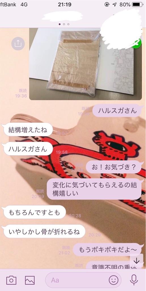f:id:asahi-mero09:20190624212709j:image