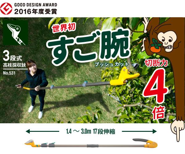 f:id:asaichi634:20190521115459p:plain