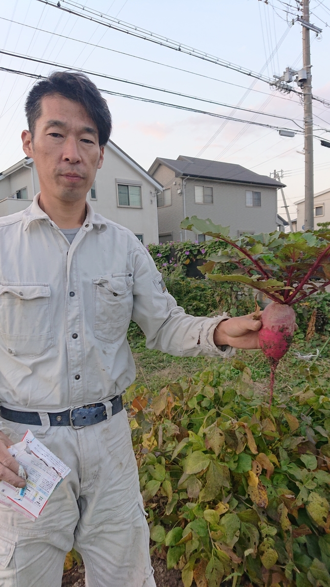 f:id:asaichi634:20201126113327j:plain