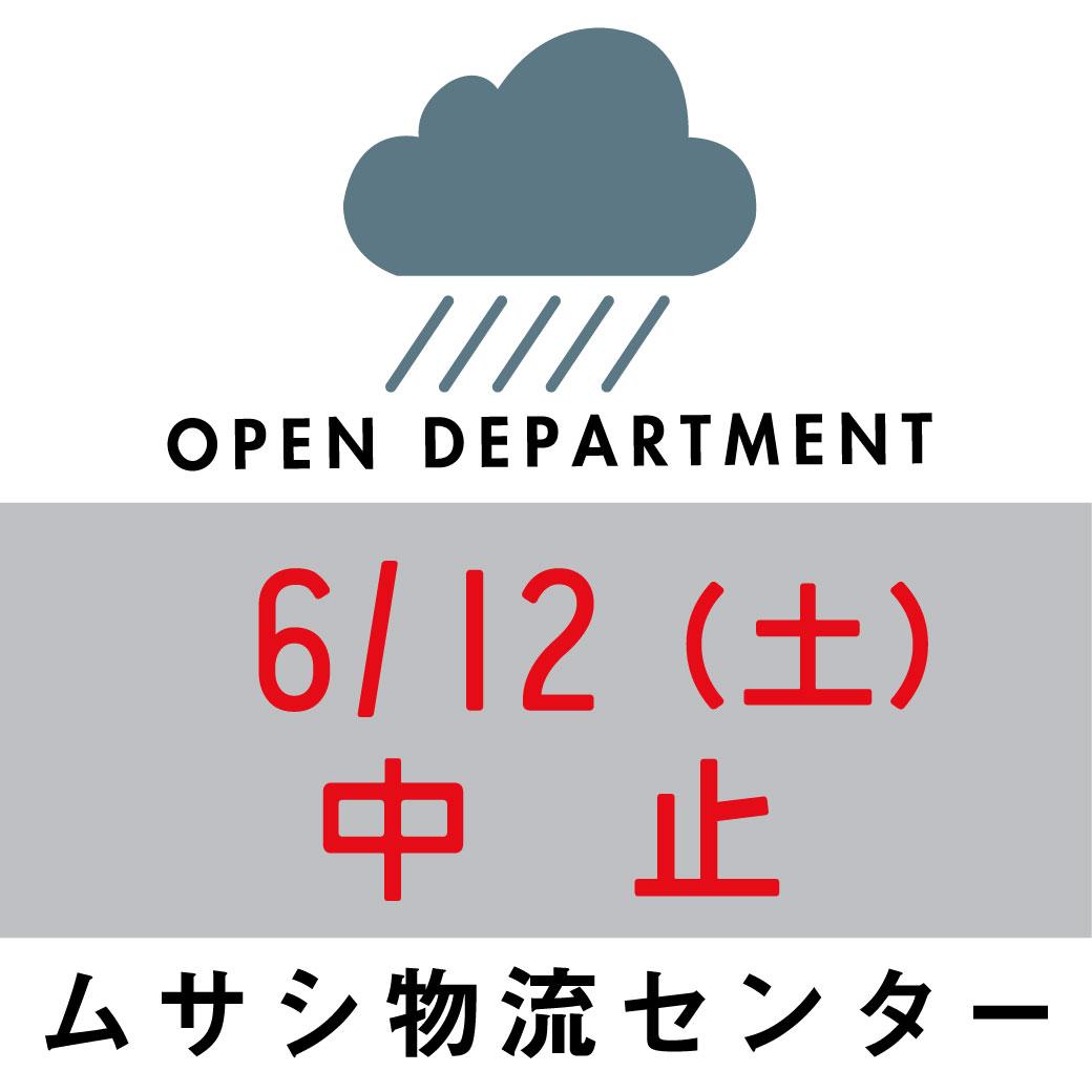 f:id:asaichi634:20210611123850j:plain