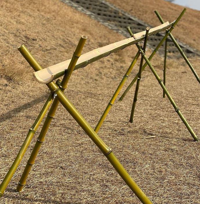 Bamboo Fam.