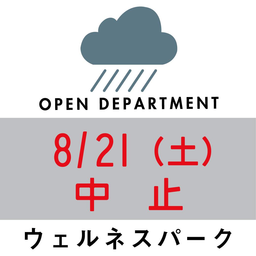 f:id:asaichi634:20210819103519j:plain