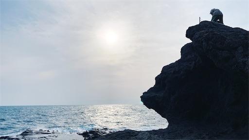f:id:asakatomoki:20200327071353j:image