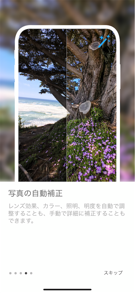 f:id:asakatomoki:20200615142711p:image