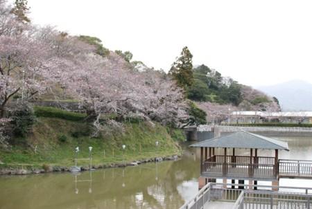 f:id:asakaze:20120331063322j:image