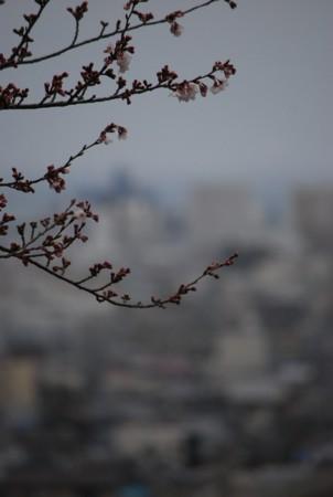 f:id:asakaze:20120331065321j:image