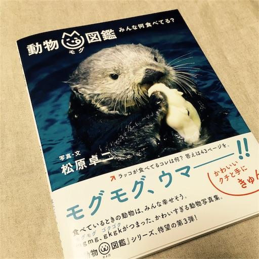 f:id:asako415:20170405222852j:image