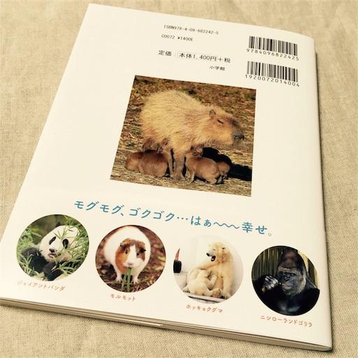 f:id:asako415:20170405222902j:image