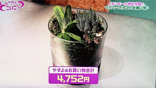 f:id:asako415:20170710220849j:image