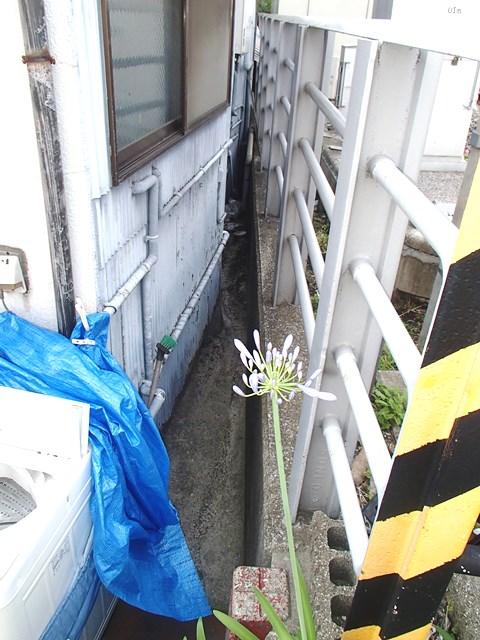 f:id:asakurahouse:20170620150900j:plain