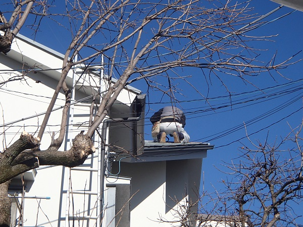 f:id:asakurahouse:20200131142401j:plain