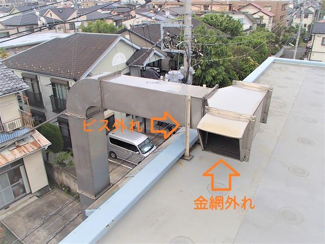 f:id:asakurahouse:20200503161951j:plain