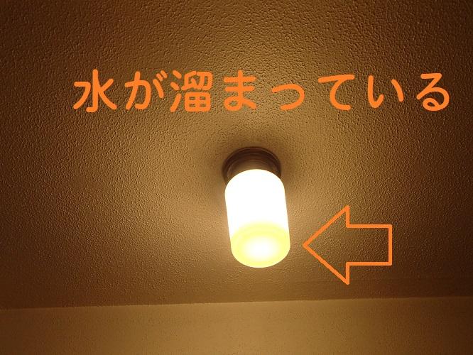 f:id:asakurahouse:20200507162026j:plain