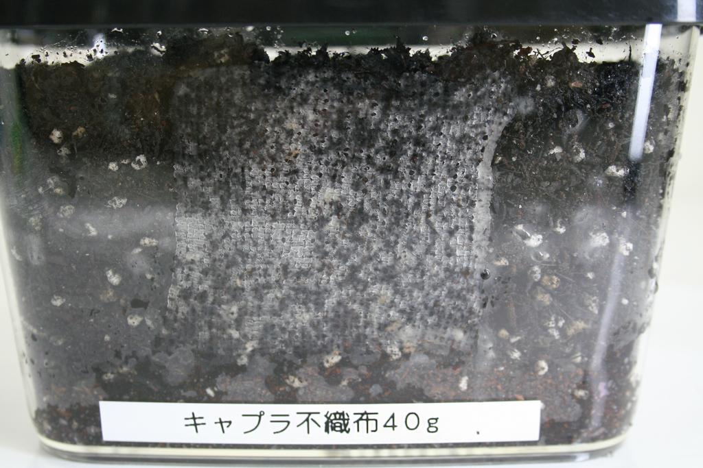 f:id:asakuraya:20181010131242j:plain