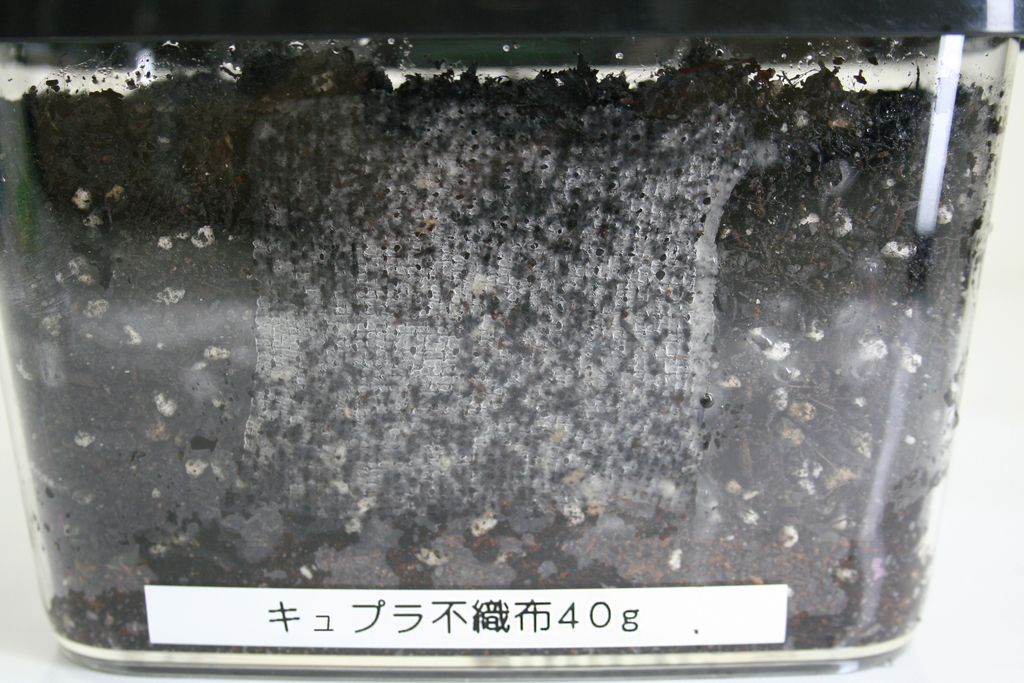 f:id:asakuraya:20190123100925j:plain